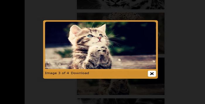 koleksi-plugin-lightbox-gratis-untuk-situs-web-wordpress-e